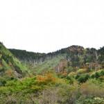 恵那山・ヘブンズ園原周辺の紅葉